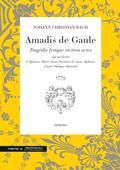 (couverture de Amadis de Gaule)